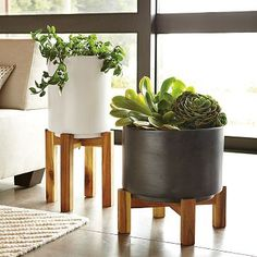 I'm obsessed with these pots from West Elm but they're sold out! If anyone know where I can get one please tell me! Or else I might have to get crafty and make it myself.