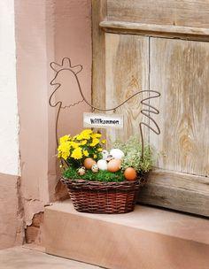 Die 19 Besten Bilder Von Pflanzkorb Garden Plants Gardening Und