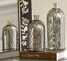 Mercury Glass Accessories | Decor/Accessories - Wire Caged Mercury Glass Bottles | Pottery Barn ...