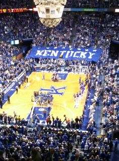 UK Basketball Go CATS