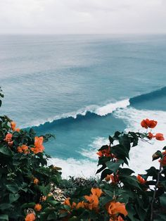 The island of the Gods. Surfers have been visiting Bali since the 70s when the trip from Kuta to the bottom of the Bukit was a days journey and you could surf by yourself. These days its all crowds, pollution, and the odd magical moment like this one. Uluwatu. Bali. Indonesia. Photo: Luna Courtois