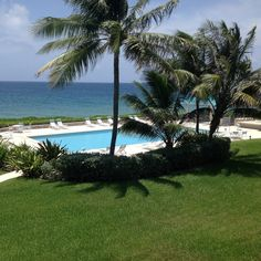 Housesitting assignment in West Bay, Cayman Islands