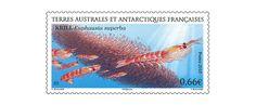 COLLECTORZPEDIA: TAAF Stamps Antarctic Krill (Euphausia superba)