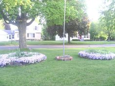 A friend did this to her front yard. I had to share the beauty of it