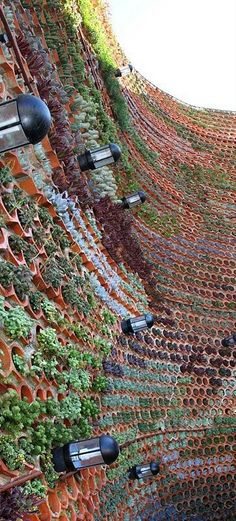 The green wall acts as a sound barrier between the open air disco located in the. The green wall acts as a sound barrier between the open air disco located in the hotel's central courtyard and the neigh. Hydroponic Gardening, Container Gardening, Gardening Tips, Urban Gardening, Fairy Gardening, Vertical Farming, Vertical Gardens, Ibiza Spain, Living Fence