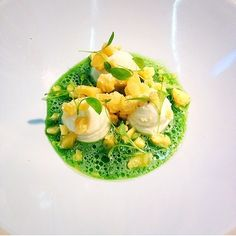 Aged cheese, celery, orange, rosemary, and onion by @tomvanlysebettens #TheArtOfPlating