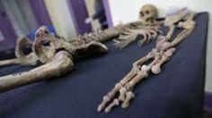 Image copyright                  BBC Mundo                  Image caption                                      Se estima que en Argentina durante el régimen militar que gobernó el país desde 1976 hasta 1983 fueron desaparecidas 30.000 personas. Muchas de ellas fueron enterradas en fosas comunes.                                Un cráneo con dos orificios en l