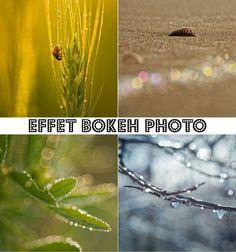 Comment réussir un joli bokeh en photographie