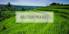 Bali Tour Packages – Day Excursions to Visit Bali Places  Bali Tour Packages, do you want to go through the wonderful Bali attractions such as rice terraces, tropical beaches, waterfalls, along with the pleasing local people with their very own traditions?  The Bali island offers everything to match your vacation with your household, buddies and even for your honeymoon holiday