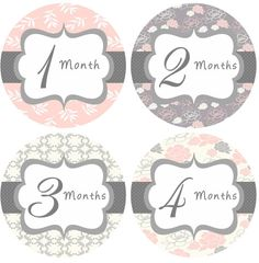 Baby Month Stickers Baby Girl Monthly Onesie by getthepartystarted, $12.00 more at http://www.etsy.com/shop/getthepartystarted?section_id=6771147