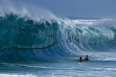 Clark Little at work photographing the Waimea Shorebreak from the impact zone    Photo Credit: Eric Minugh