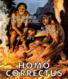 Image result for palaeolithic age discovery fire