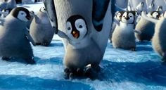 Happy Feet 2- Clip to show Cooperation