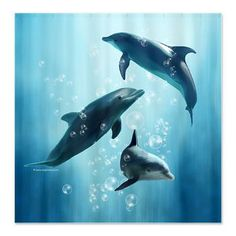 Good Dolphins In The Sea Shower Curtain