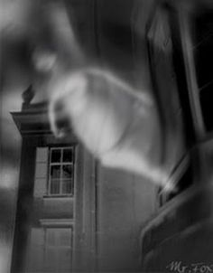 A painting? A photo? Dust on the camera? Ghost Pictures, Creepy Pictures, Haunted Places, Haunted Houses, Paranormal Pictures, Creepy Images, Shot In The Dark, Spirit World, Stormy Night