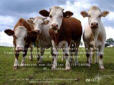Friedrich Schiller und die Wissenschaft