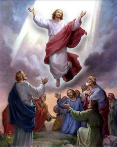 ascencao de Jesus - Bing images