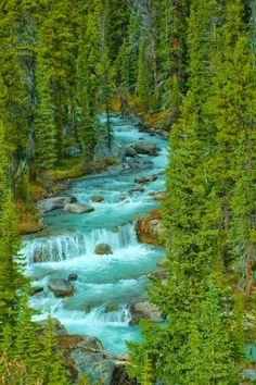 Jasper National Park....