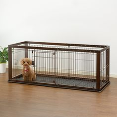 Amazon.com : Richell Expandable Pet Crate with Floor Tray, Medium, Dark Brown : Pet Supplies