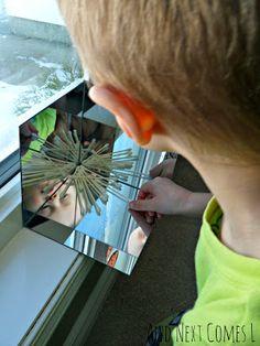 And Next Comes L: Exploring Symmetry with Snowflakes in a DIY Mirror Box {Light & Reflections Series} Full Day Kindergarten, Kindergarten Science, Stem Preschool, Preschool Playground, Elementary Science, Preschool Ideas, Teaching Math, Maths, Winter Activities