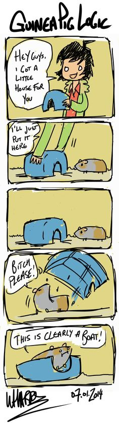 My guinea pigs do this all the time!