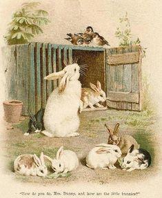 bumble button...vintage bunny images by SAburns