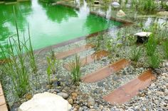 Beautiful natural pool with cast steps