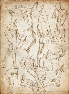 Anatomía masculina en diferentes poses. Male anatomy in different poses.