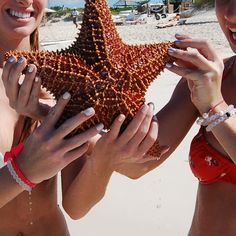 They found a starfish in Turks and Caicos, took a quick picture and set him free! #livelokai