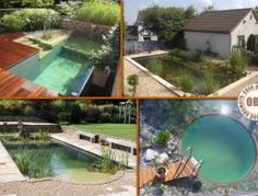 Here are four examples of beautiful and environmentally friendly natural swimming ponds. Which of these do you want for your backyard?