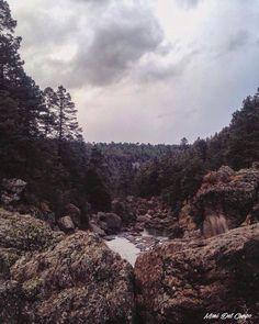 Mil Diez, sierra del estado de Durango. Fotografía Moni del Campo