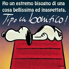 #snoopy #bonifico ♡ Graziella ~ Oui, c'est moi...