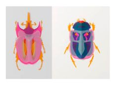 Colour Theory Paper Insects - Arts At Trinity