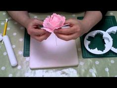 Learn how to make trendy gum paste peony flowers using the new gum paste cut-out set. Tips, tools and ingredients listed below. Want more tips? Subscribe: ht...