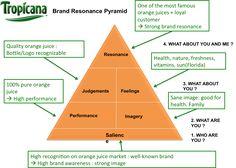 Brand resonance Pyramid for Tropicana