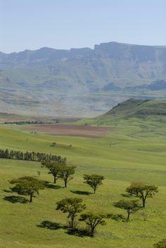 Drakensberg, Kwazulu-Natal, South Africa  4 WEEKS, 4 WEEKS! WOOOHOOOO