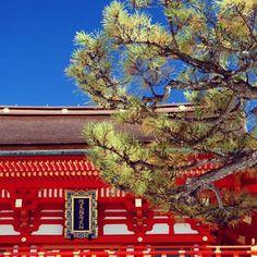 #fushimi #inari #kyoto #japan