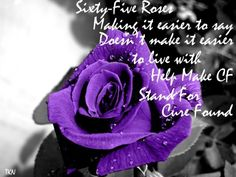65 roses - Google Search