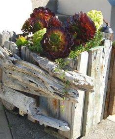Drift Wood Garden Fence & Planters recycled drift wood garden planter - also a great idea for a balcony!recycled drift wood garden planter - also a great idea for a balcony! Driftwood Planters, Fence Planters, Driftwood Projects, Driftwood Art, Porch Planter, Planter Garden, Planter Ideas, Porch Garden, Garden Landscaping