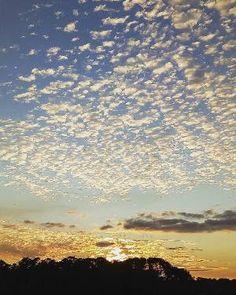 An epic sunset in South Carolina.