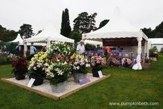 Harts Nursery are a specialist Lily and bulb nursery. Here's their stand at the…