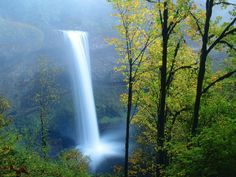 Silver Falls State Park, Oregon  Used to live right by here ... I'd love to visit again!
