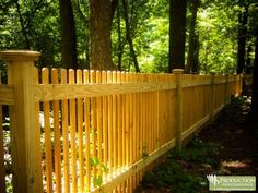 back yard fence,another project down the road......far down the road :)