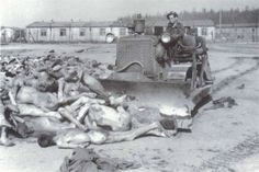 Bergen-Belsen concentration camp- Horrendous and disgusting tragedy. Hitler was so sick, and it's impossibly tragic to believe he swayed so many people.