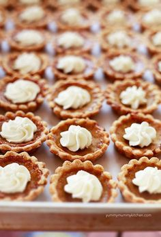 Mini pumpkin pies. Going to try these for family Christmas party. Hope I don't get lynched.