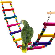 Bird Supplies Home & Garden Honest Pet Bird Colorful Beads Bell String Toys Chewing Swing Cage Accessory Bird Toy Plastic Metal Beautiful In Colour