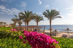 Sommerurlaub in Ägypten: 1 Woche im beliebten 4* Hotel ab 469€ mit All Inclusive & Flügen