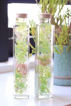 """本物の花々をガラスの中に閉じ込めた""""FLOWERiUM®︎(フラワリウム)""""独自の開発技術によりみずみずしい状態の花々を長期間鑑賞できるようにした新しいインテリア雑貨です特殊な保存液で封じ込めることによりフラワリウム特有の瑞々しさが生まれ長期間に渡って色鮮やかな草花のある暮らしをお楽しみいただけますガラスの中で揺れ動く草花たちは優しい光に照らされて宝石のようにキラキラと輝き透き通った花びらが幻想的な空間を演出します「たくさんの人に花のある暮らしをお届けしたい」そんな想いが込められたフラワリウムは、ひとつひとつ、作り手によって丁寧に作られています使用されているのは全て本物の花々一つ一つ手作業で製作しているため、同じ者が二つと無いところも魅力ですボトルを上下にひっくり返したり傾けたり… Interior Paint Colors, Paint Colors For Home, Flowers In Jars, Healing Herbs, Botanical Art, Interior Design Living Room, Voss Bottle, Glass Vase, Wedding Flowers"""