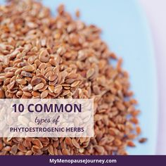 Have you been diagnosed with having low estrogen symptoms in menopause? Phytoestrogenic herbs could be your safe go-to treatment! Low Estrogen Symptoms, Menopause Symptoms, Health News Articles, Health Tips, Natural Remedies For Menopause, Menopause Relief, Organic Supplements, Womens Wellness, Natural Beauty Tips