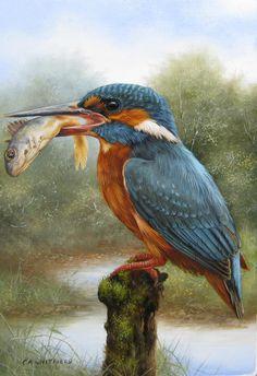 Цитата сообщения irin69 Работы Carl Andrew Whitfield (b.1958) Wildlife Paintings, Wildlife Art, Animal Paintings, Watercolor Bird, Watercolor Paintings, Kingfisher Bird, British Wildlife, Bird Drawings, Beautiful Birds